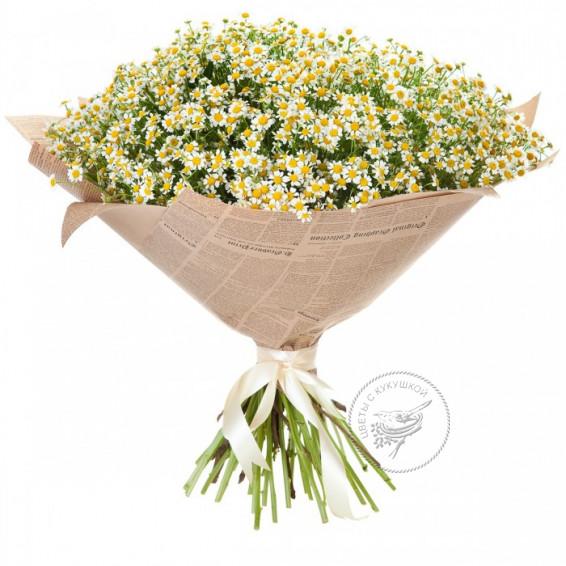 Букет кустовых ромашек «Всегда лето»
