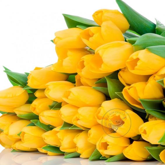 Тюльпаны Желтые Strong Gold