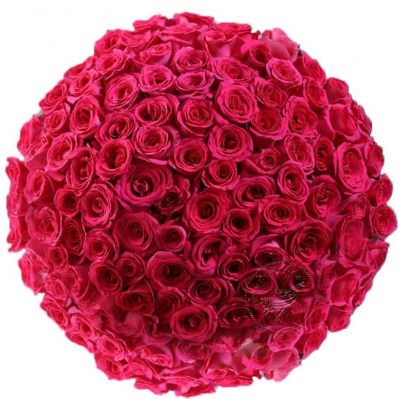 """Букет из 101 красной розы """"Фридом"""" высотой 50 см."""