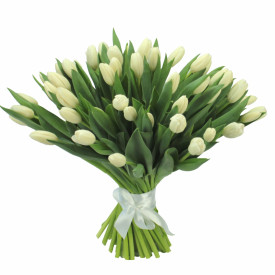 Букет тюльпанов «Белый»