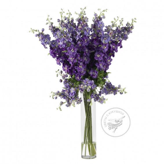 Дельфиниум Фиолетовый