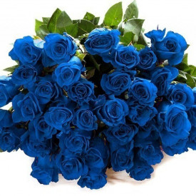 Роза Mondial Синяя