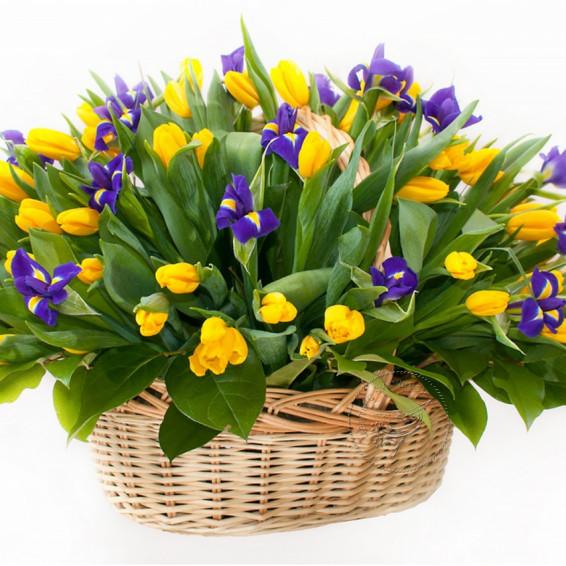 Тюльпаны в корзине «Весенняя поляна»
