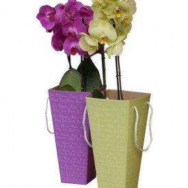 Коробка для цветов 95*150*405 (в ассортименте)