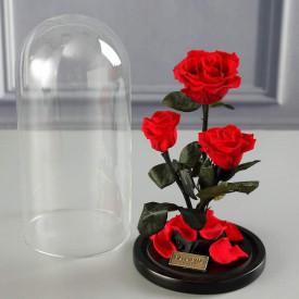 Роза в колбе Тройная Красная