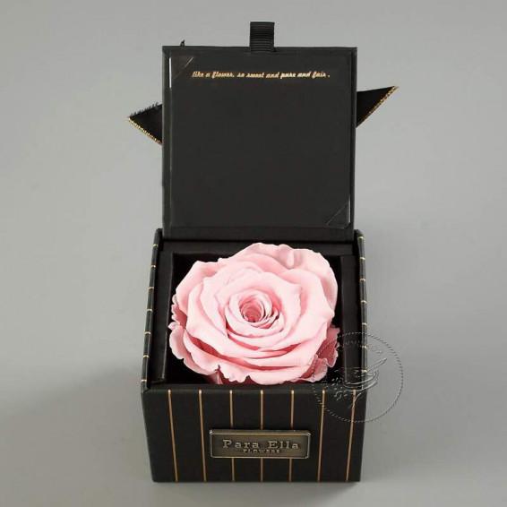 Вечная роза в коробке Розовая